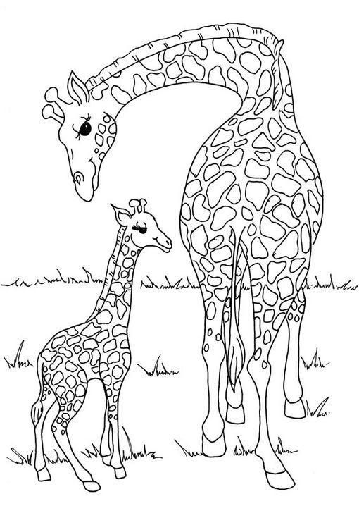 Dibujo para colorear Jirafa madre e hija