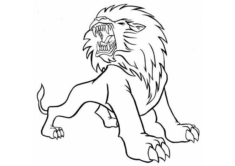 Dibujo para colorear León 09