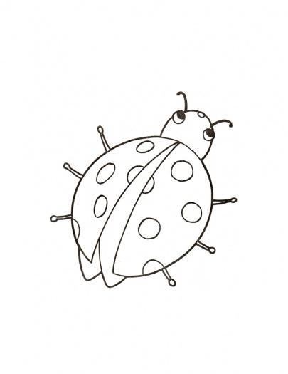 Dibujos Mariquitas Infantiles Free Resultado De Imagen De