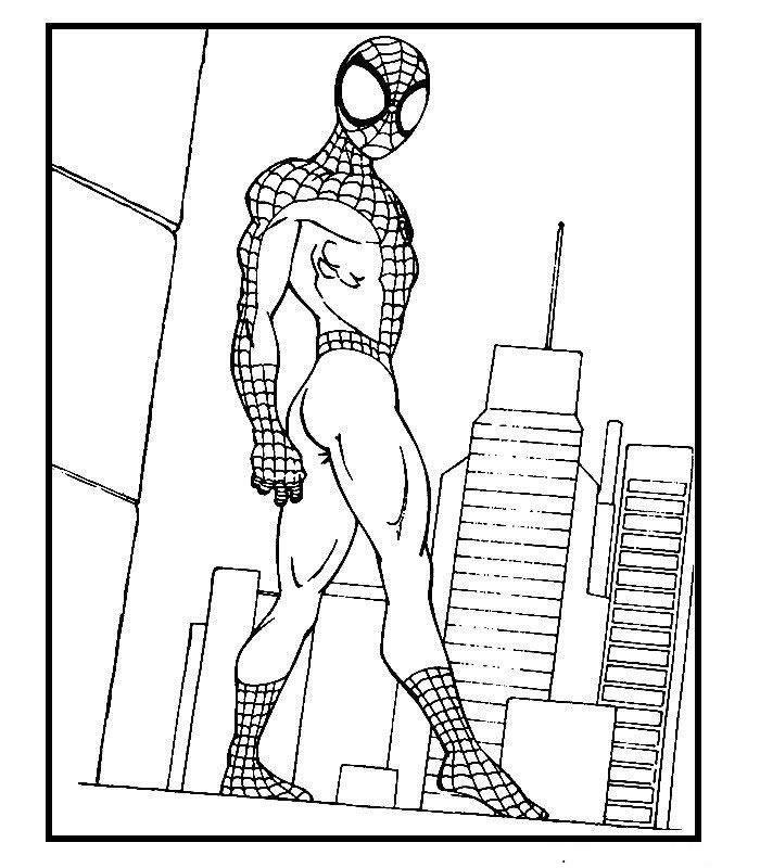 Dibujo Para Colorear Spiderman 07